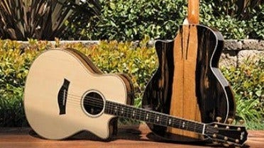 More Music from Sustainably Harvested Wood in Spain